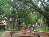Universidad Javeriana de Bogotá.